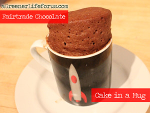 A-Greener-Life-For-Us-Fairtrade-Chocolate-Cake