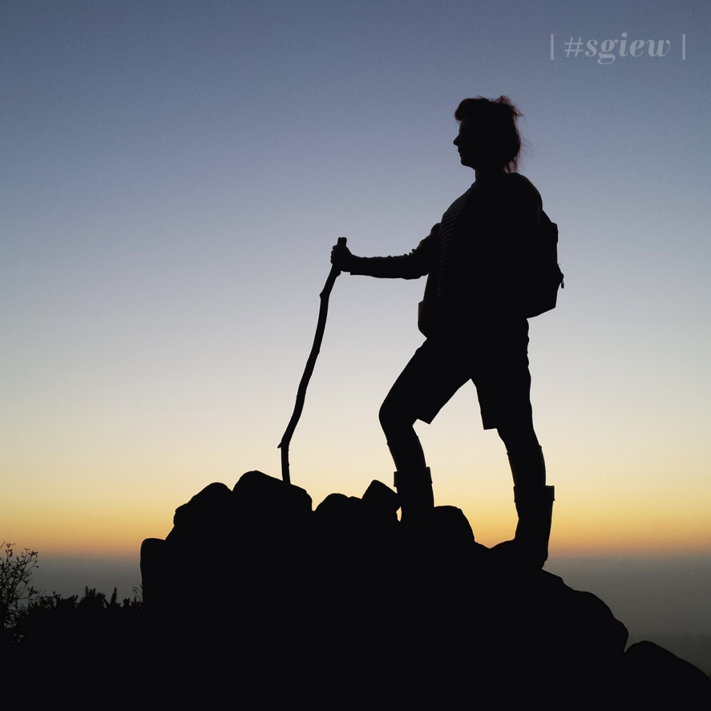 sgiew silhouette
